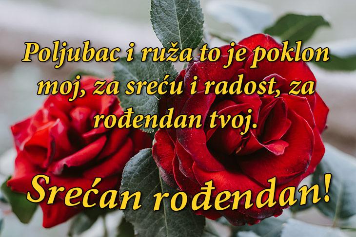 rođendanske čestitke smiješne Najlepše rođendanske čestitke   slike rođendanske čestitke smiješne